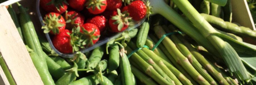 Frutta e verdura alla luce del sole!